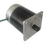 55mm Brushless DC Motor